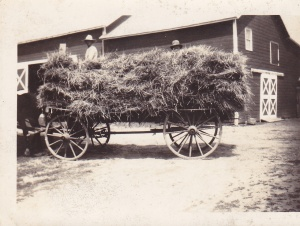 Vosburgh farm circa mid-1800s