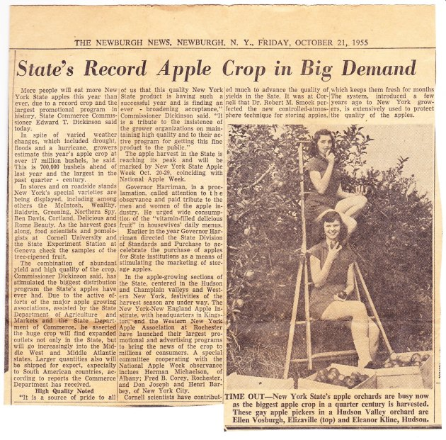 Record Crop 1955